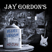 Play & Download Blues Venom: No Cure by Jay Gordon | Napster
