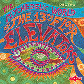 The Psychedelic World Of The 13th Floor Elevators CD2 by Various Artists