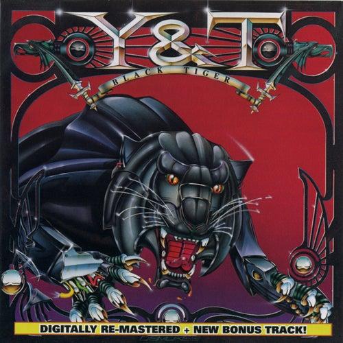 Black Tiger by Y&T