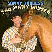 Too Many Horses by Sonny Burgess