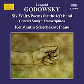 Godowsky: Piano Music, Vol. 12 by Konstantin Scherbakov