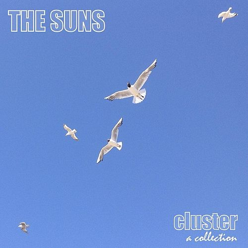 Play & Download Cluster (A Collection) by The Suns | Napster