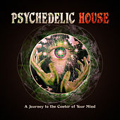 Play & Download Psychedelic House - A Journey to the Center of Your Mind by Various Artists | Napster