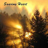 Play & Download Soaring Heart. Soothing Nature Sounds Wood Flute Songs by Kevin Doberstein | Napster