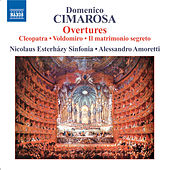 Play & Download CIMAROSA: Overtures, Vol. 1 by Nicolaus Esterhazy Sinfonia | Napster