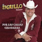 Play & Download Por Las Calles Enlodadas by El Tigrillo Palma | Napster