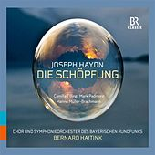 Play & Download Haydn: Die Schöpfung (The Creation) by Various Artists | Napster