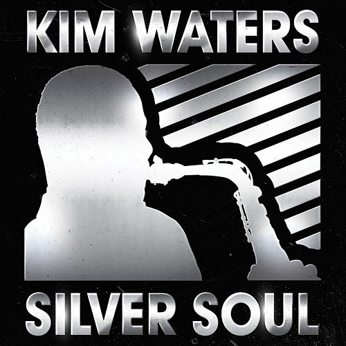 Silver Soul by Kim Waters