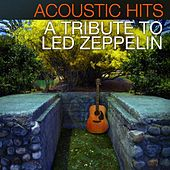 Play & Download Acoustic Hits - A Tribute to Led Zeppelin by Acoustic Hits | Napster