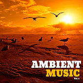 Play & Download Ambient Music, Vol. 2 by Various Artists | Napster