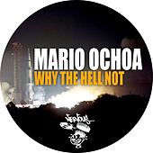 Why The Hell Not by Mario Ochoa
