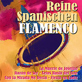 Play & Download Reine Spanischen Flamenco by Various Artists | Napster