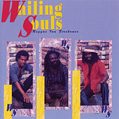 Play & Download Reggae Ina Firehouse by Wailing Souls | Napster