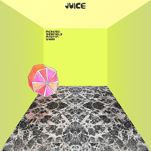 Juice by Medeski, Martin and Wood