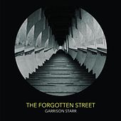 The Forgotten Street by Garrison Starr