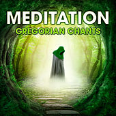 Play & Download Meditation - Gregorian Chants by Capella Gregoriana | Napster