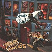 Awake At Night by Toini & The Tomcats