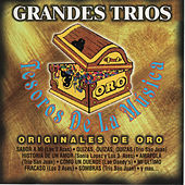Grandes Trios Tesoros de la Musica by Various Artists