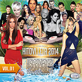 Hitovi Leta 2014 - vol. 01 by Various Artists