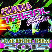 Play & Download Cumbia Tribal Mix Lo Mejor Del Tribal 2015 by Dj Moys | Napster
