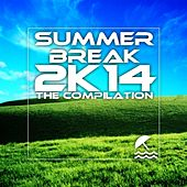 Summer Break 2K14 - EP by Various Artists