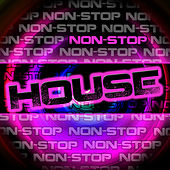 Play & Download Non-Stop House by Various Artists | Napster