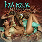 Harem: Club & Chillout Remixes by Various Artists
