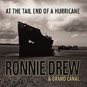 Play & Download At The Tail End Of A Hurricane by Ronnie Drew | Napster
