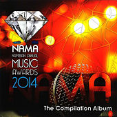 Play & Download NAMA Namibian Annual Music Awards 2014 (The Compilation Album) by Various Artists | Napster