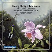 Play & Download Telemann: Grand Concertos, Vol. 1 by Various Artists | Napster