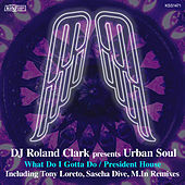 Play & Download What Do I Gotta Do / President House by Urban Soul | Napster