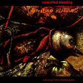 Play & Download Dub Songs from a Shallow Grave by Controlled Bleeding | Napster