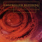 Play & Download Gilded Shadows by Controlled Bleeding | Napster