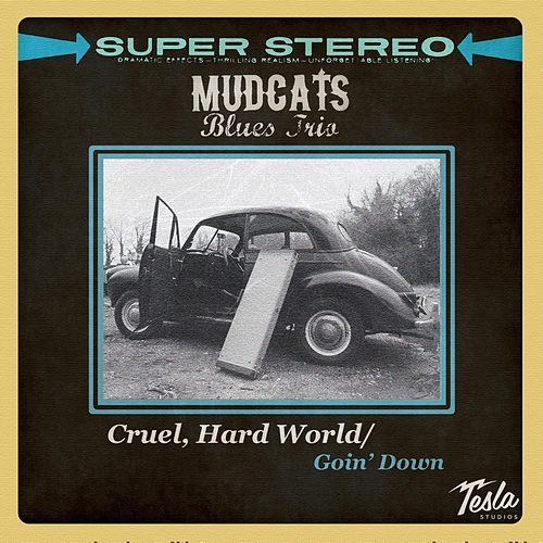 Play & Download Cruel, Hard World by Mudcats Blues Trio | Napster