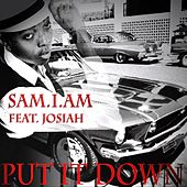 Put It Down (feat. Josiah) by Samiam