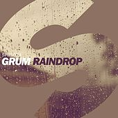 Play & Download Raindrop by Grum | Napster