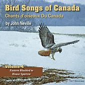 Play & Download Bird Songs of Canada, Vol. 4 by John Neville | Napster