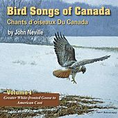 Play & Download Bird Songs of Canada, Vol. 1 by John Neville | Napster