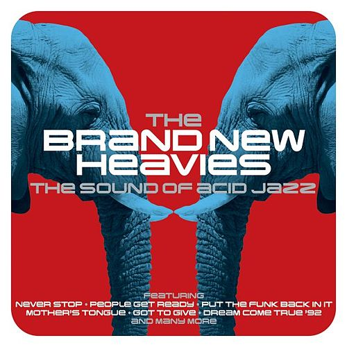 The Sound of Acid Jazz by Brand New Heavies
