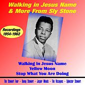 Walking in Jesus Name & More from Sly Stone by Sly & the Family Stone