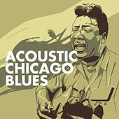 Play & Download Acoustic Chicago Blues by Various Artists | Napster