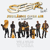 Play & Download SEER Jubiläums Open Air (Live) by Seer | Napster