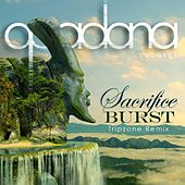 Play & Download Sacrifice by Burst | Napster