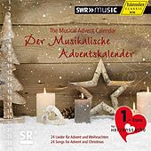 Der Musikalische Adventskalender by Various Artists