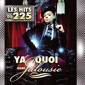 Play & Download Ya quoi dans jalousie (Les hits du 225) by Various Artists | Napster