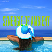 Play & Download Synergie of Ambient by Various Artists | Napster