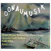 Play & Download Donaumusik by Various Artists | Napster