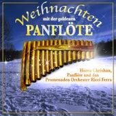 Play & Download Weihnachten mit der Goldenen Panflöte by Weihnachten mit Panflöte | Napster