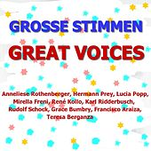 Play & Download Die Großen Stimmen - The Great Voices by Various Artists | Napster