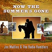 Play & Download Now The Summer's Gone by Joe Mullins | Napster